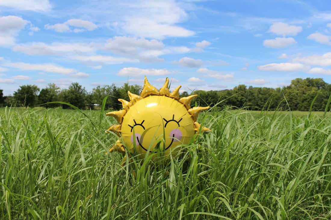 care-sun.jpg